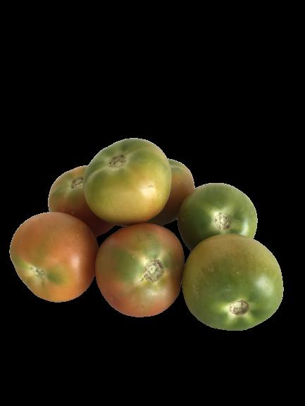Tomate Ensalada Caja 5 kg 1